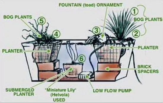Small Water Garden Needs No Electricity Just Place Pots: Pond In A Pot: Create A Container Water Garden