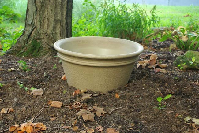 broken pot to control invasive plants