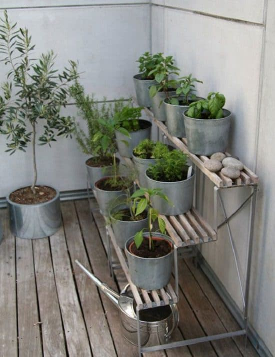 If You Own A Ious Balcony Or Terrace Certainly Find Place To Grow Herbs And Create Real Herb Garden In Large Chest Of Drawers