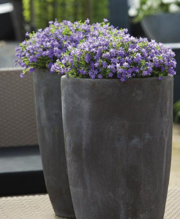 balcony planter ideas (10)_mini