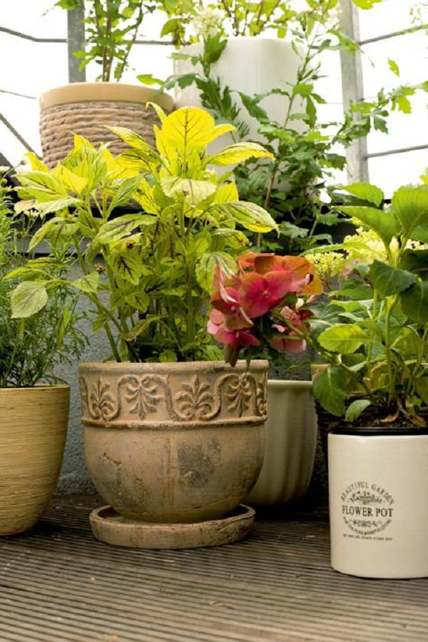 balcony planter ideas (12)_mini