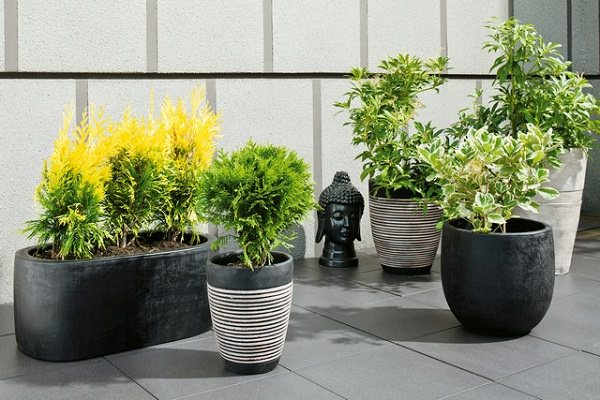 balcony planter ideas (4)_mini
