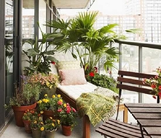 Grow Some Easy To Plants And Low Care Ferns In Your Urban Dwelling This Will Give A Neat Look Balcony Garden