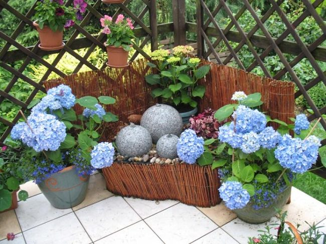 landscaping with hydrangea (11)_mini