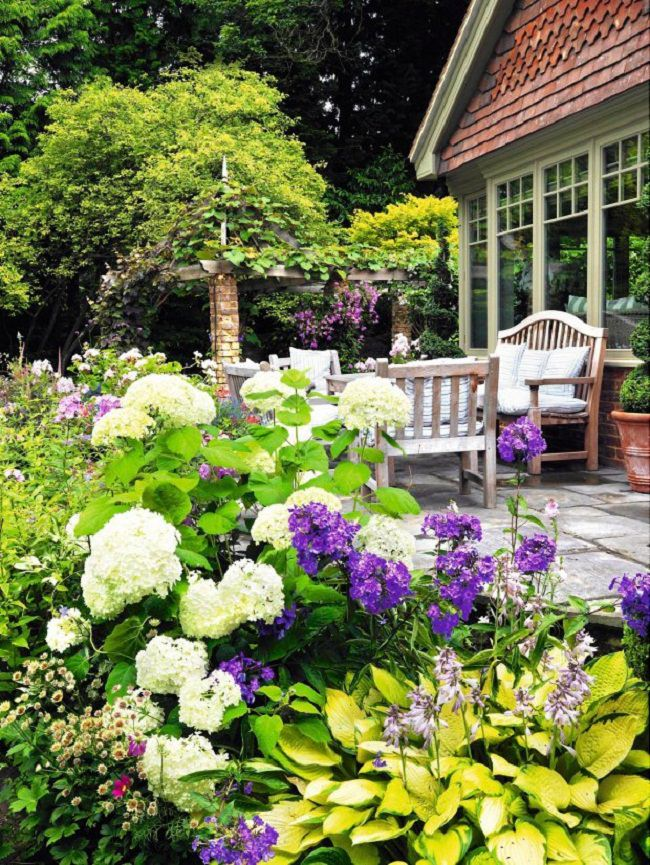 landscaping with hydrangea (1)_mini
