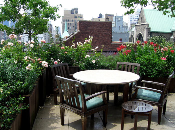 Ten Top Tips For Small Shady Urban Gardens: Best Terrace/Roof Garden Plants You Should Grow