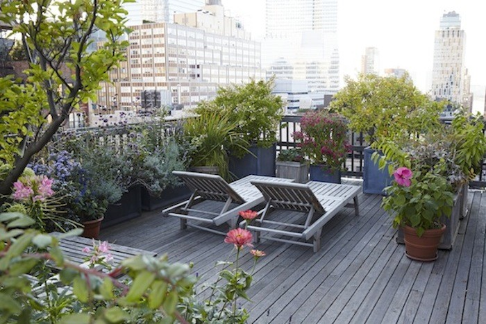 beautiful terrace garden (4)