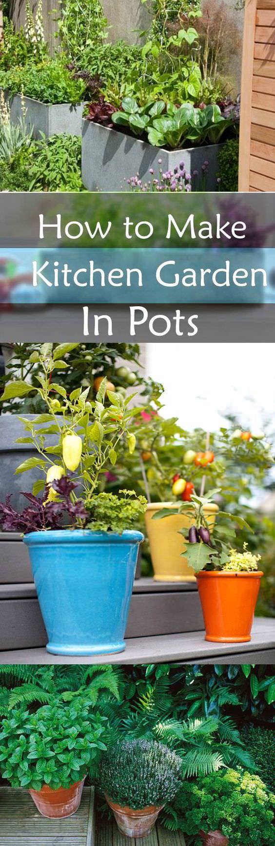 Learn how to make a kitchen garden in pots. See tips on growing fresh and organic vegetables and herbs in your container kitchen garden.