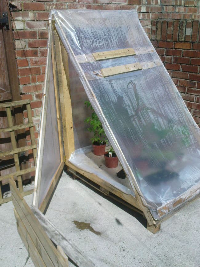 Easy Diy Mini Greenhouse Ideas Creative Homemade Greenhouses