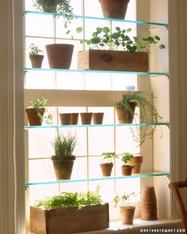 Easy DIY Mini Greenhouse Ideas | Creative Homemade Greenhouses ... Greenhouse Plans Window Design on square foot gardening plans, a-frame cabin plans, window home, window greenhouse ideas, window pane greenhouse, window frame greenhouse, window box greenhouse,