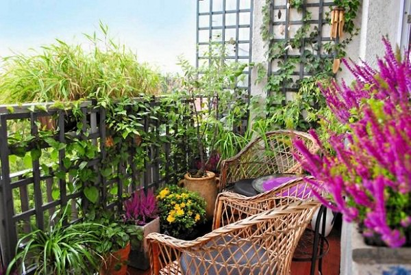 8 Apartment Balcony Garden Decorating Ideas you Must Look at ...