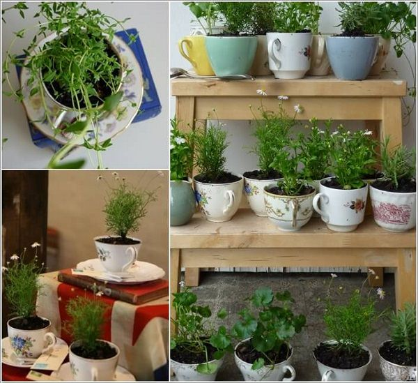 Grow A Herb Garden In Vintage Teacups That You No Longer Use Not Only It Will Look Good But This Way Be Able To Your Own Herbs