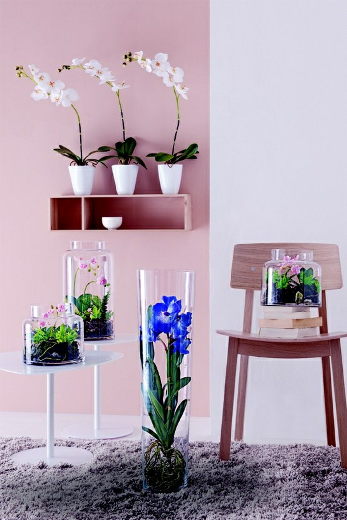 Houseplant display Ideas more (8)