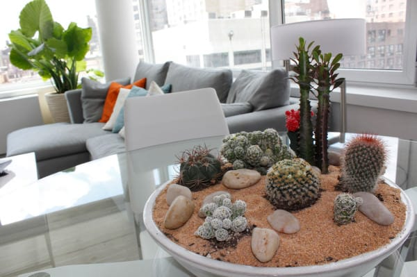 Stylish Houseplant Display Idea (2)