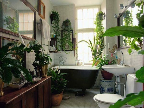Stylish Houseplant Display Idea (5)
