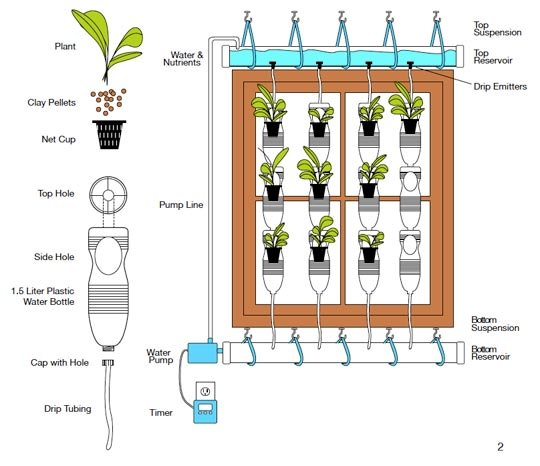 13 Plastic Bottle Vertical Garden Ideas | Soda Bottle Garden
