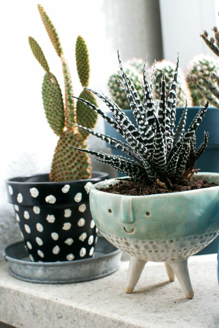 Dispaying Houseplants 5 Use Cool Pots And Planters