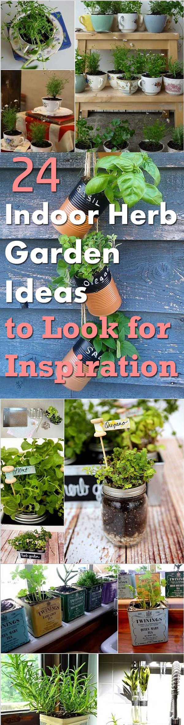 indoor herb garden ideas (2)
