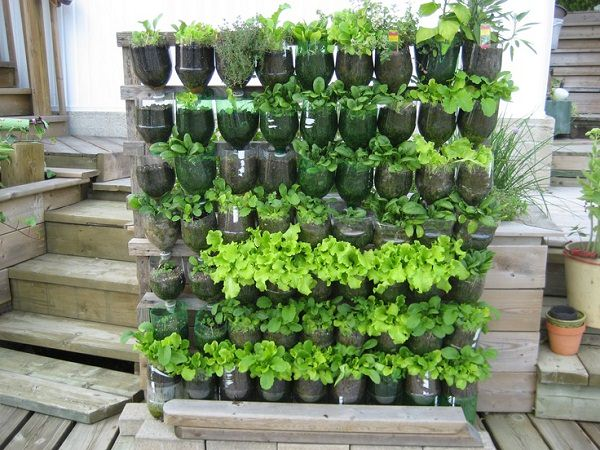 vertical-garden_bottles