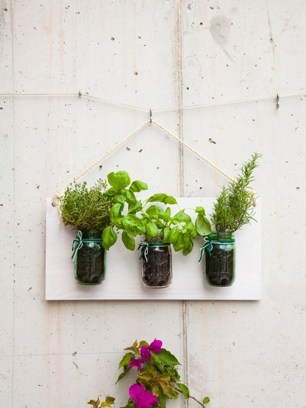 wall decoration herb garden