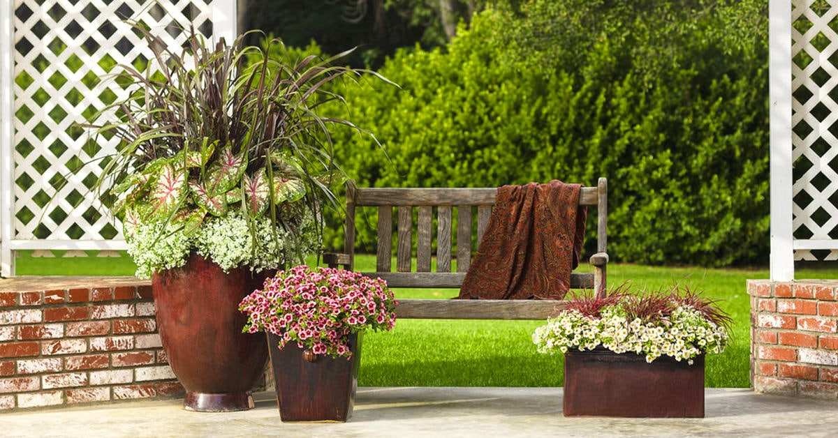 Balcony Garden Web : fall flower pot ideas - startupinsights.org