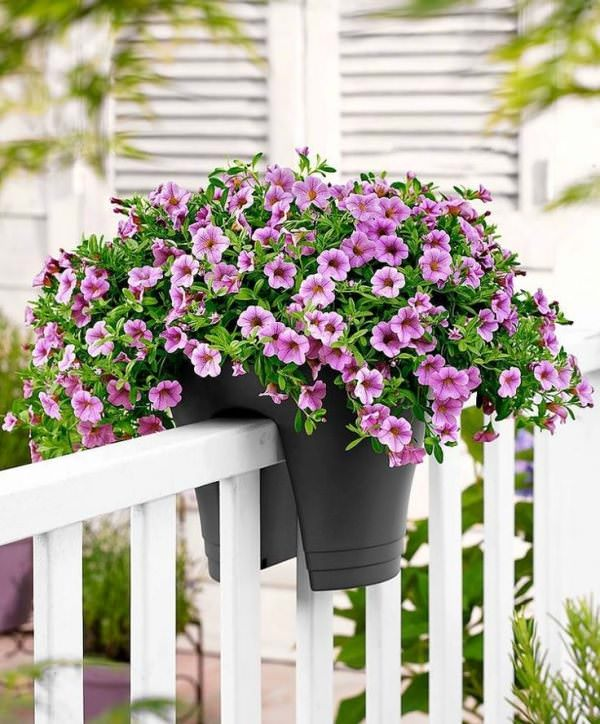 balcony decorating ideas 26