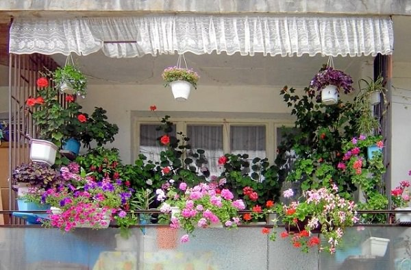 balcony garden small ideas 2