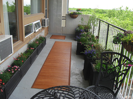 ... Balcony Gardening Tips