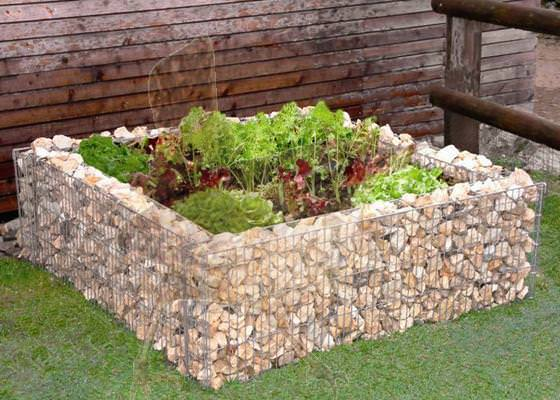 gabion raised bed