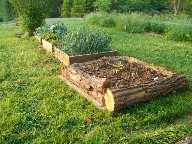 DIY raised bed ideas