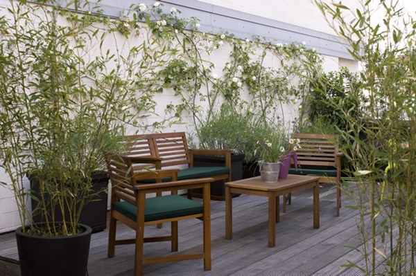terrace garden privacy ideas