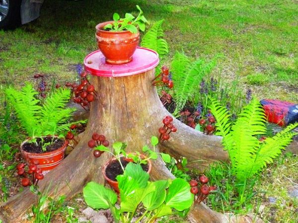 tree stump garden ideas (2)