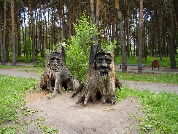tree stump ideas