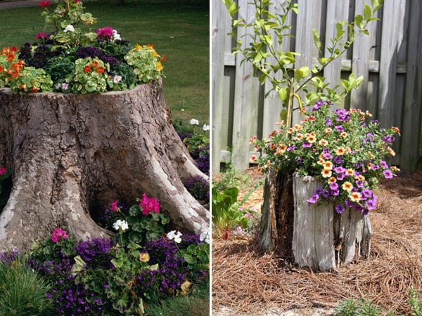 tree stump planter ideas (1)