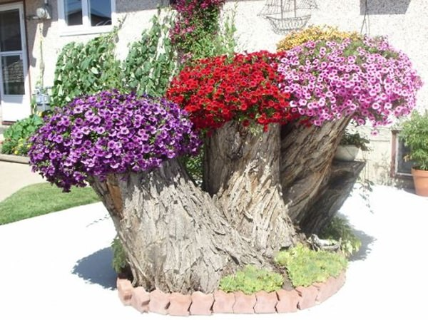 tree stump planter ideas (16)