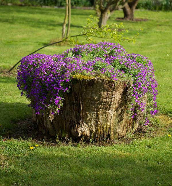 tree stump planter ideas (17)