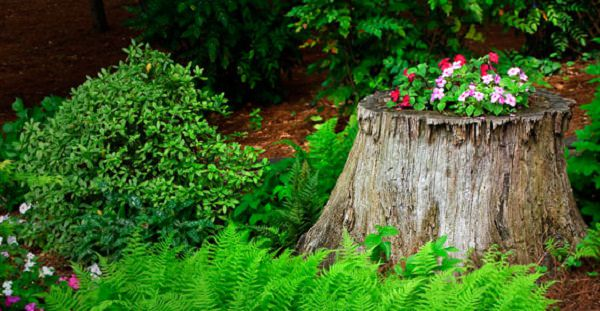 tree stump planter ideas (4)