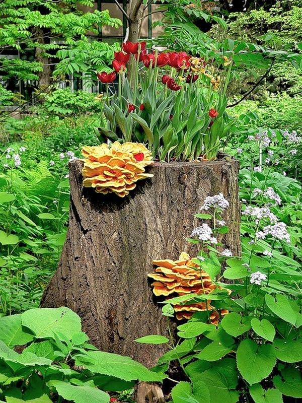 tree stump planter ideas (8)