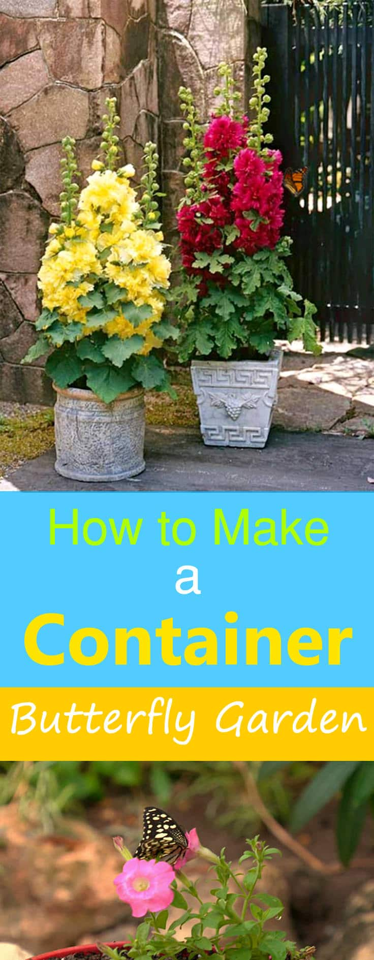 Even if you're short of space, making a butterfly garden in containers is possible with some of the amazing hacks in this article!