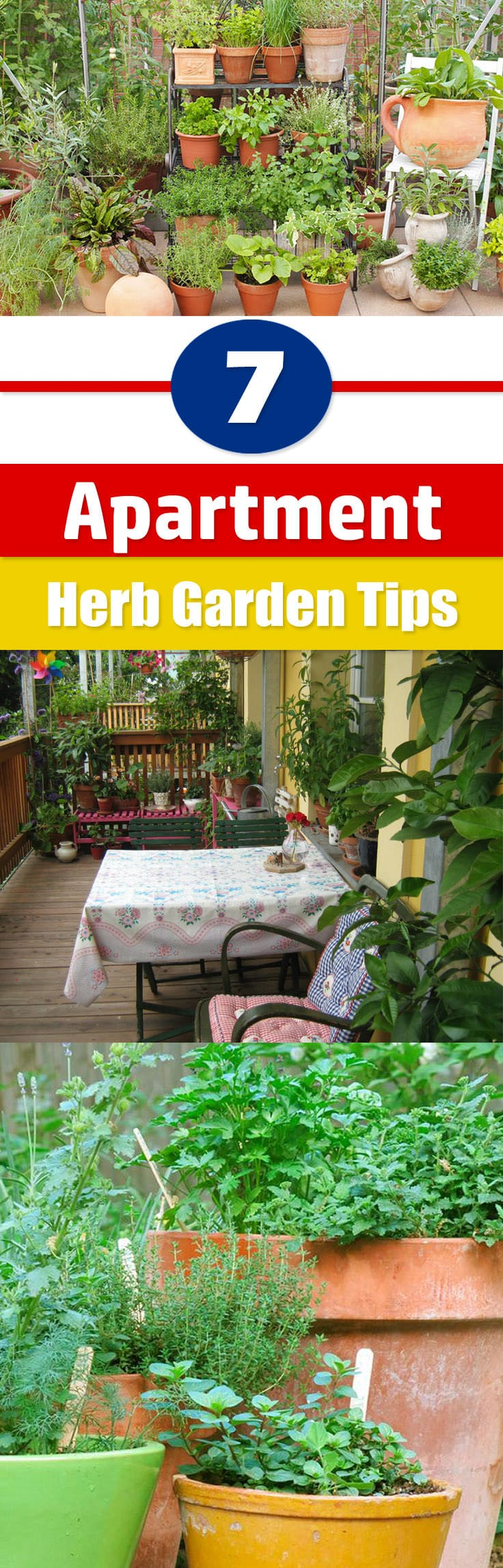 balcony appartment herb garden tips