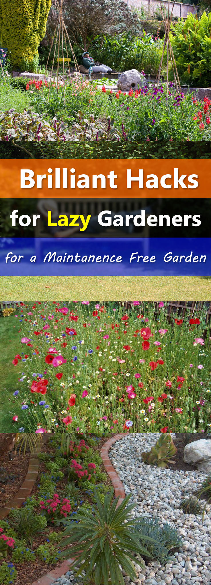 You love to garden but don't find time to maintain it. Don't bother, imply these easy landscaping tips to make a low maintenance garden.
