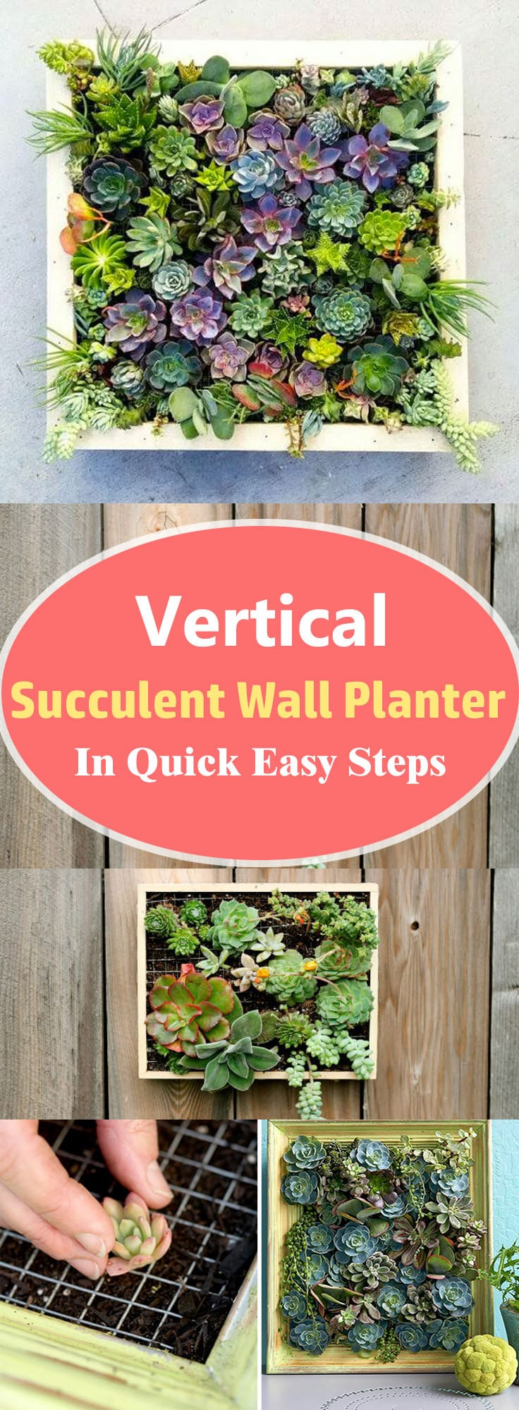 Vertical Succulent Wall Planter In Quick Easy Steps Diy Succulent Frame Balcony Garden Web