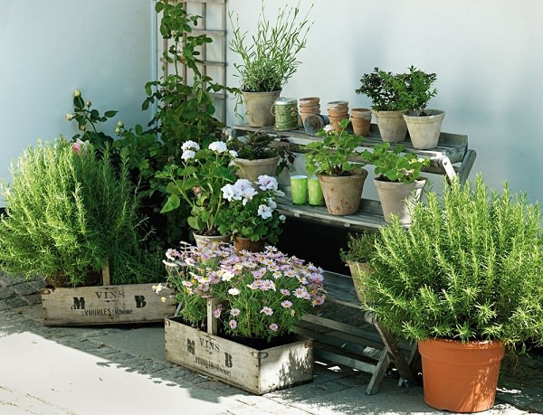 Grow More Than Just Herbs Urban Apartment Herb Garden
