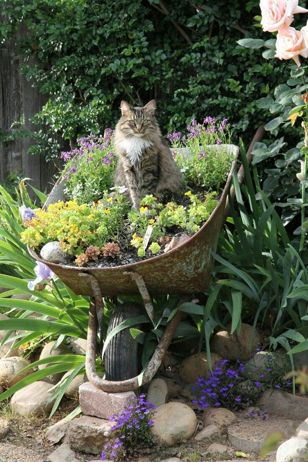 wheelbarrow planter (2)