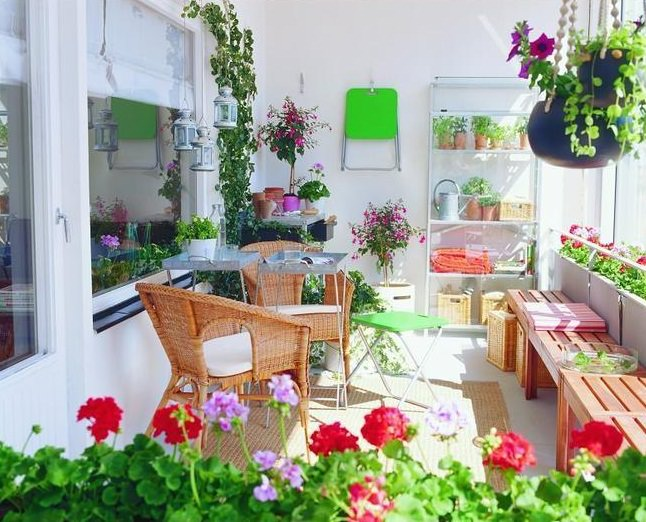 Do You Have A Balcony Garden? Check Out 6 Balcony Garden Tips For Its Care  In Summer.