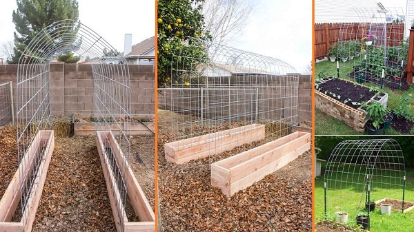 DIY-Raised-Garden-Box-With-Trellis