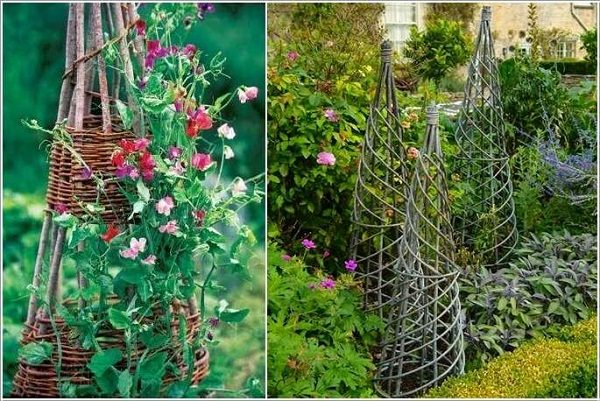 garden trellis from branches