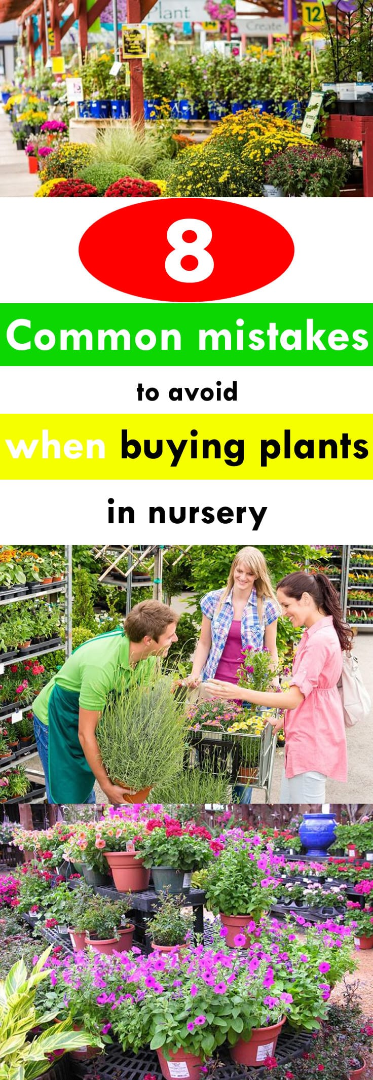 See how you can buy the best plants in a nursery or garden center by avoiding these 8 common mistakes.