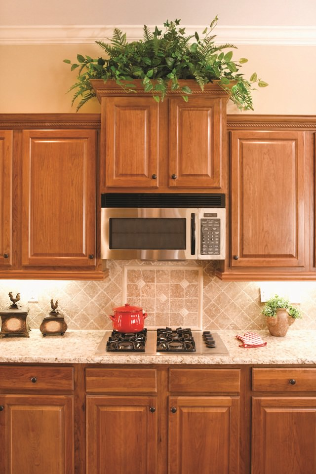 Best Kitchen Plants Plants For Kitchen To Decorate It
