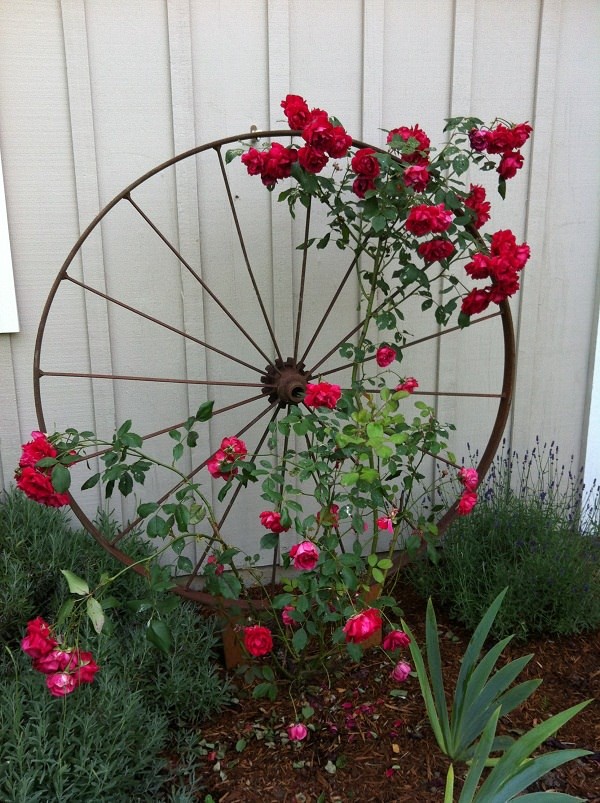 Garden Trellis Ideas 1 Wagon Wheel Upcycled From Wheels